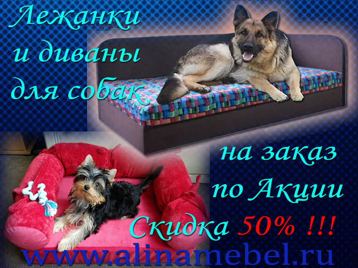 Диваны для собак и лежанки для домашних животных