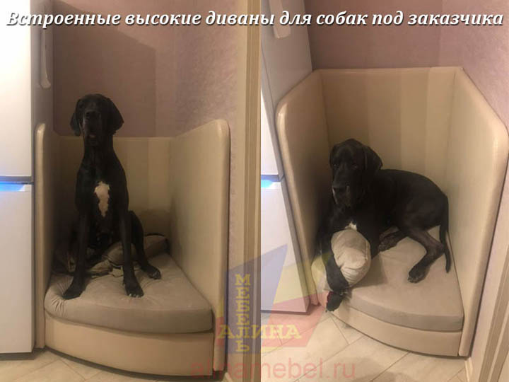 Изготовление встроенных диванов для собак