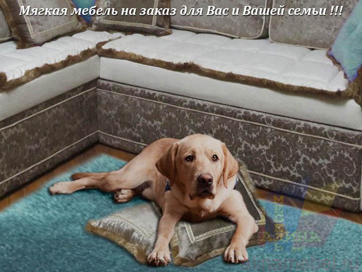Мягкая мебель для домашних животных