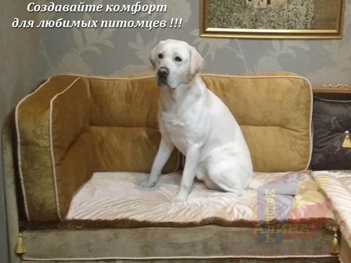 Мягкая мебель на заказ для собак