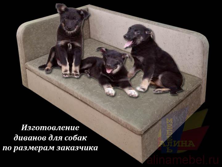 Диваны для собак на заказ
