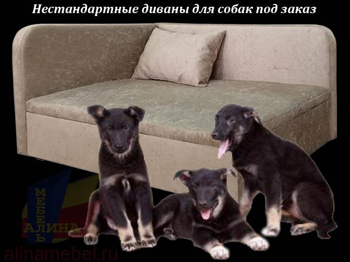 Изготовление диванов для собак на заказ