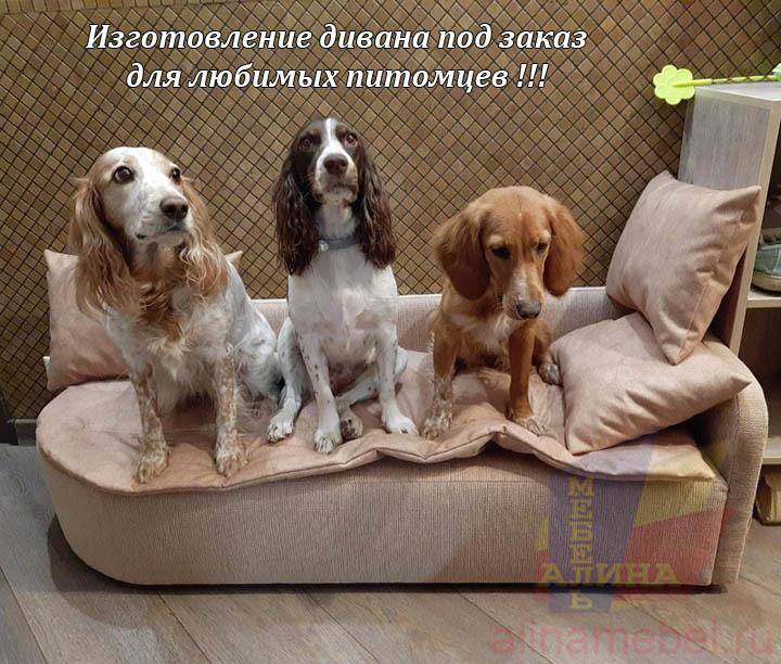 Диван для собак по индивидуальным размерам