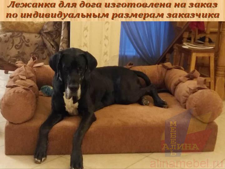 Лежанка для собаки на заказ