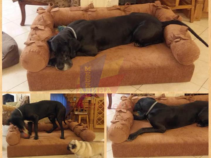 Изготовление лежанок для собак