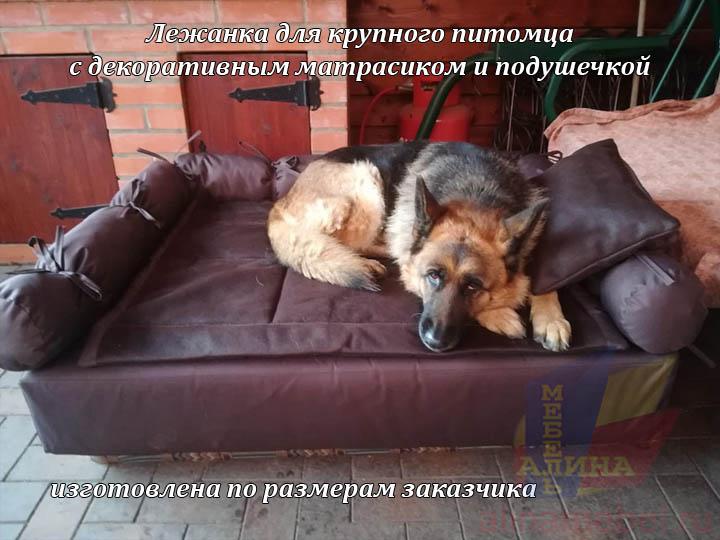 Лежанка для крупной собаки на заказ