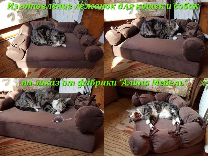 Лежанки для кошек и котов на заказ