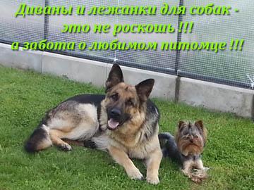 Диваны и лежанки для собак