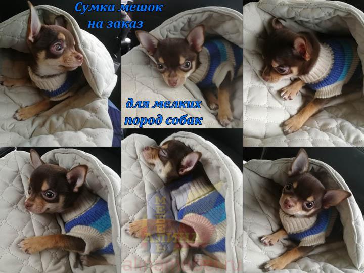 Пошив сумок и мешков для мелких собак